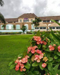 Hard Rock Hotel Punta Cana 5