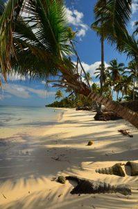 Hard Rock Hotel Punta Cana 2